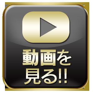 動画を見る!!