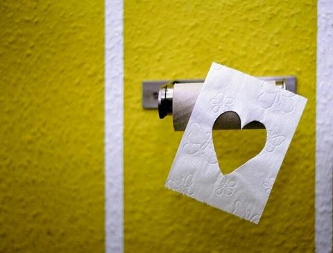 toilet-paper-3675180_640