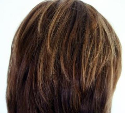 hair_2517729