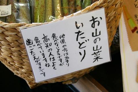 a-kouchi0505