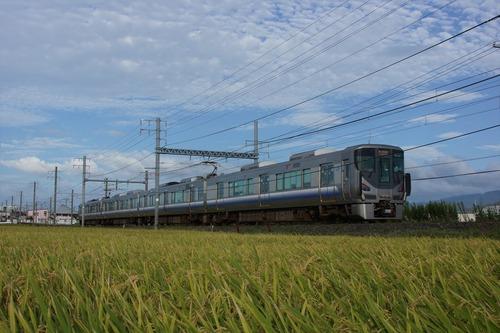 DSC02006_R