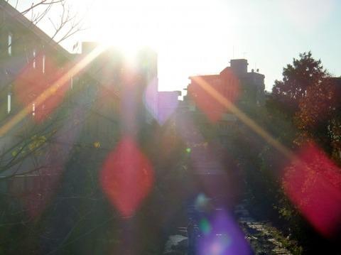 日差し (2)