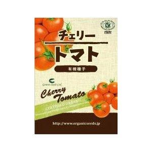 yasaimura_63786