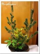 flower_20071229-2