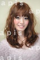 2011_1216_endo_06