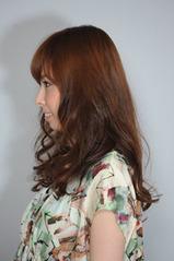 2011_0527_endo_04