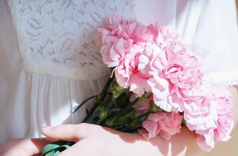 flowers-1329316_960_720