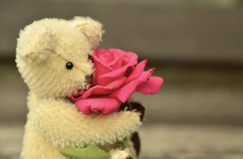 teddy-889814_960_720