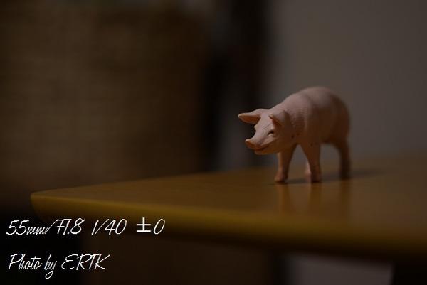 DSC06892.jpg22
