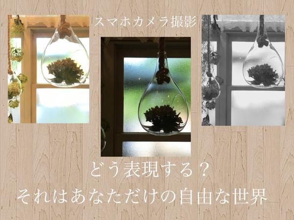 IMG_6180