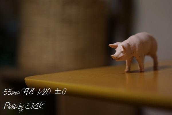 DSC06891.jpg22