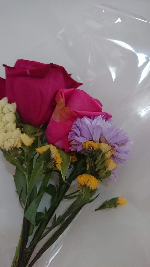 Bloomeelife しおれた花 再送依頼 取替え (1)