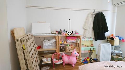 整理収納サービス 茨城 つくば おもちゃ (9)
