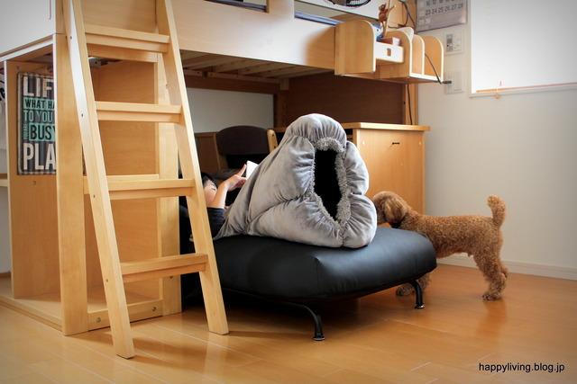 子供部屋 男の子 ソファ 掃除がラク ベッド 机 (1)