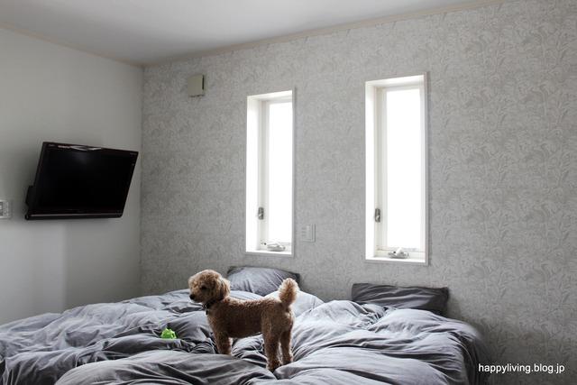 サンゲツ 壁紙 スヌーピー FE1325 アクセントクロス 寝室 (11)