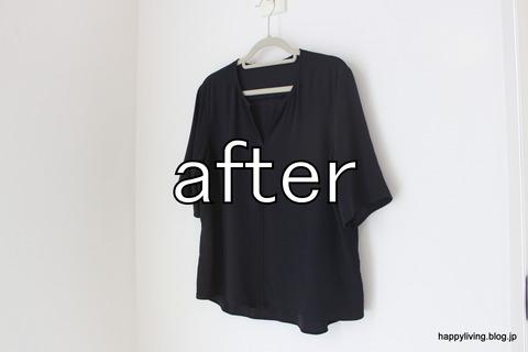ティファール T-fal 衣類スチーマー (12)