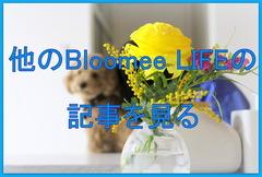 500円 ワンコイン 花 ポスト BloomeeLIFE 丁寧な暮らし (6)