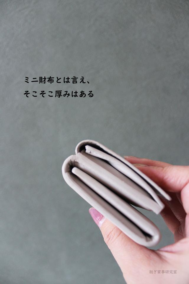 ミニ財布 デメリット スマホケース キャッシュレス (1)