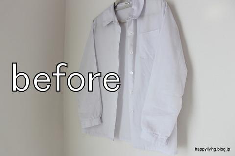 ティファール T-fal 衣類スチーマー (3)