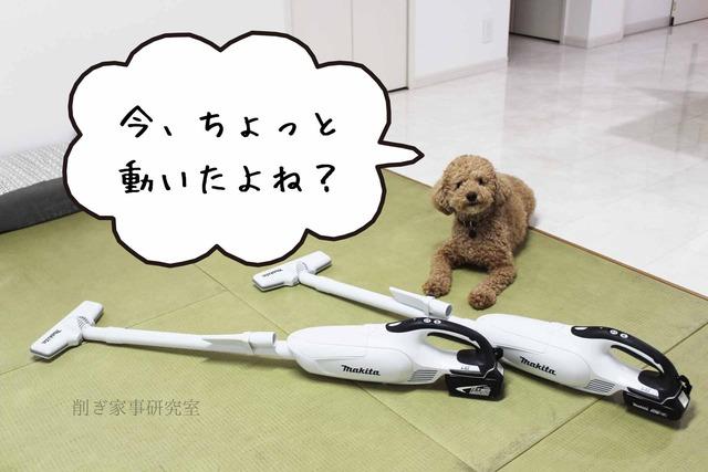 犬 掃除機 嫌い (4)