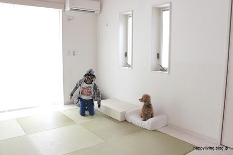 犬 階段 ベッド ソファ クッション ステップ (6)