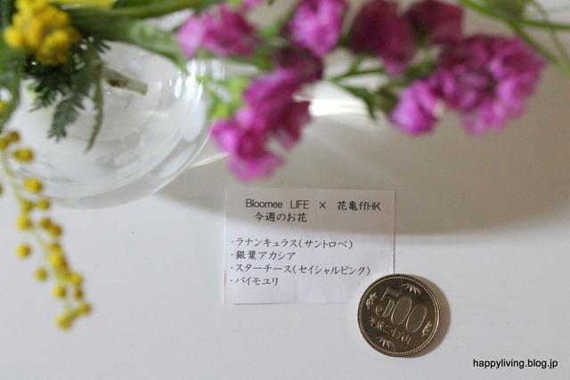 500円 ワンコイン 花 ポスト BloomeeLIFE 丁寧な暮らし (3)