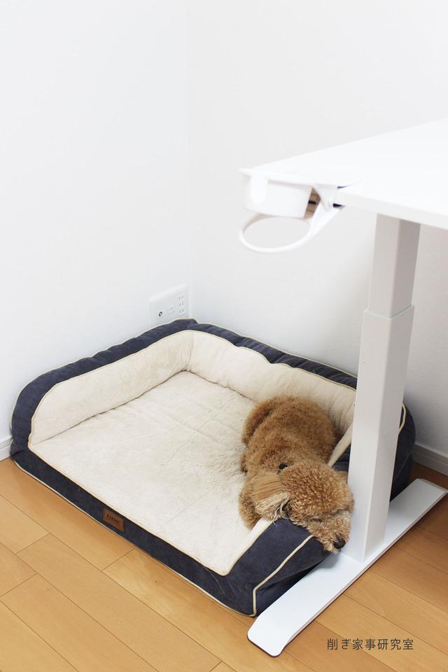 犬ベッド2