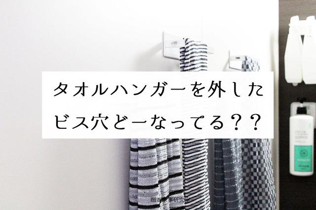 お風呂 タオルハンガー 外す 穴 (3)