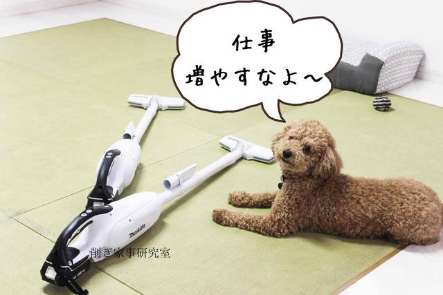 犬 掃除機 嫌い (7)