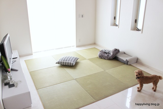 和紙畳 リビング 床暖 インテリア 広く フラット (8)