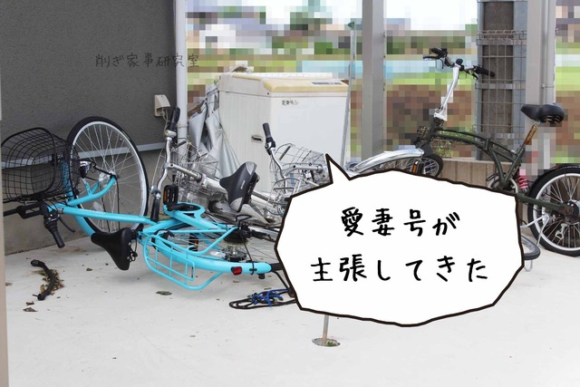庭 コンクリ 掃除がラク (4)
