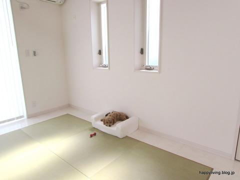 犬 ベッド ソファ ホワイトインテリア