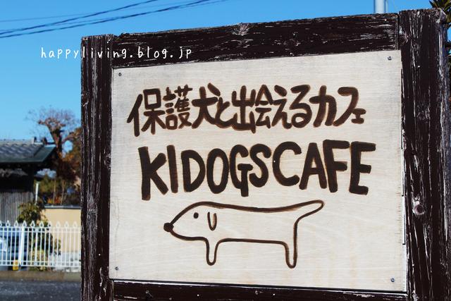 保護犬カフェ つくば キドックス 里親 中型犬ミックス (3)