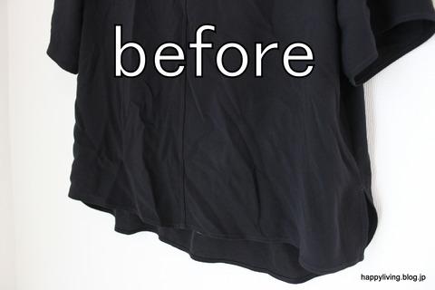 ティファール T-fal 衣類スチーマー (2)