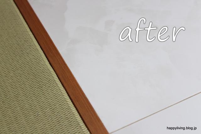 スチームクリーナー スチームファースト 床掃除 布製品 (6)