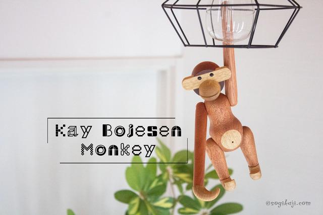 カイ・ボイスン-モンキー5
