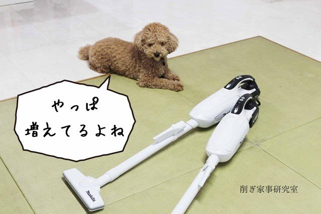 犬 掃除機 嫌い (2)