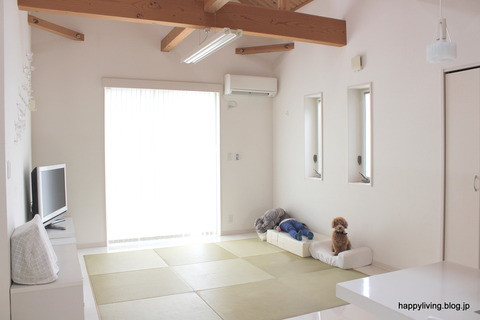 犬 階段 ベッド ソファ クッション ステップ (5)