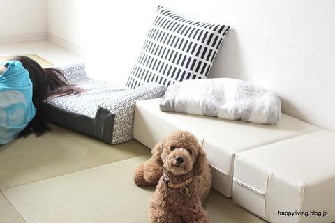 犬ベッド カバー artek 手作り モノトーン (1)