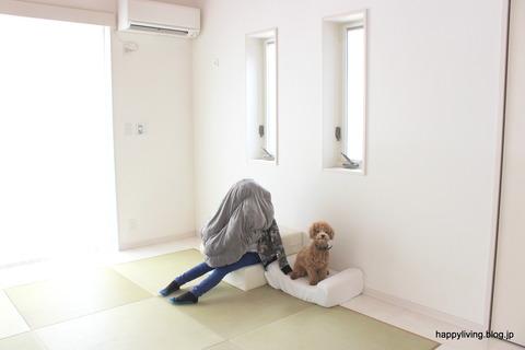 犬 階段 ベッド ソファ クッション (2)
