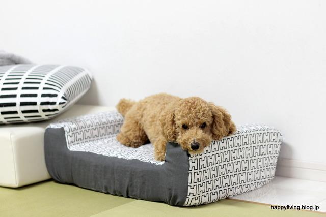 わんにゃ365 100均 犬用ソファ ベッド 手作り (12)-001