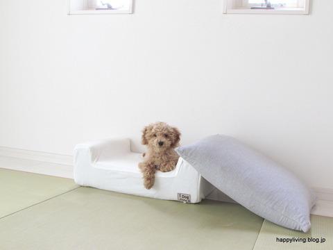 犬 ベッド ソファ