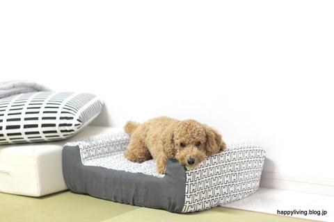 犬ベッド カバー artek 手作り モノトーン (9)