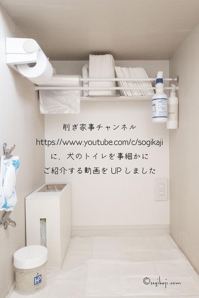 犬のトイレ3