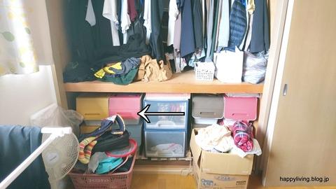 整理収納サービス 片付け 趣味 クローゼット 茨城 (10)