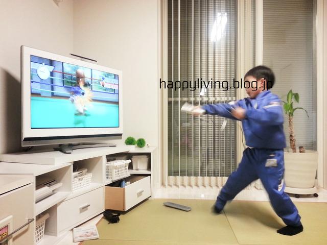 WiiU Fit 断捨離 使う 製造終了 (7)