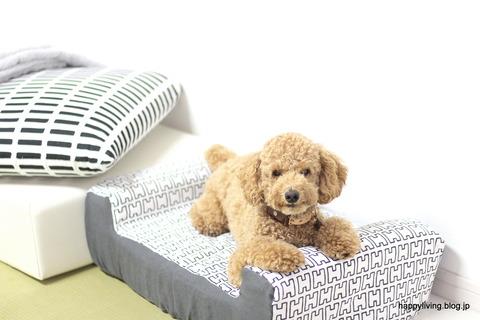 犬ベッド カバー artek 手作り モノトーン (10)