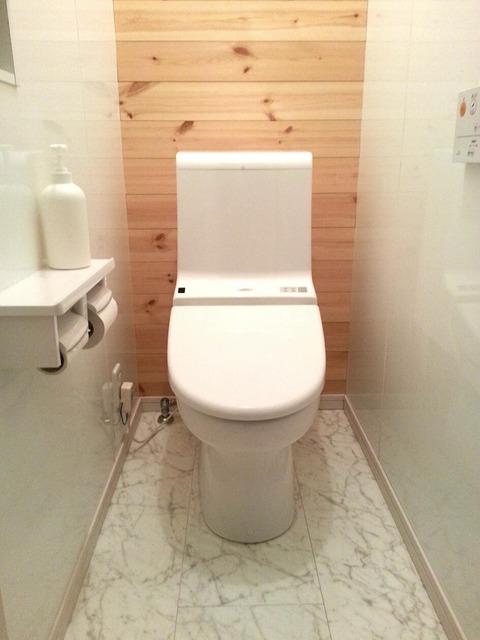 シンプル 置かない トイレ
