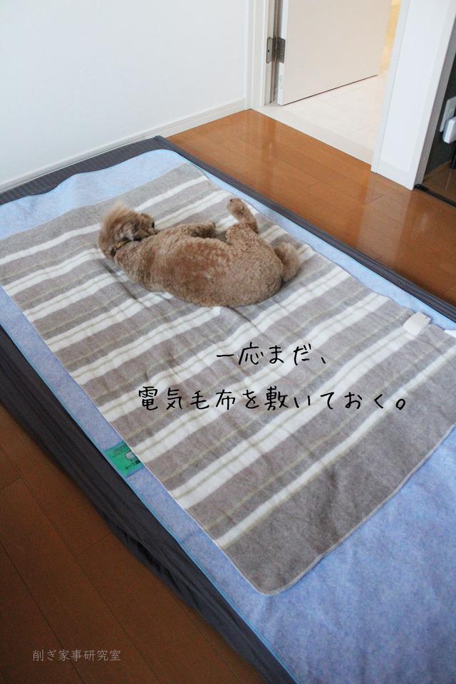 子供部屋寝具6