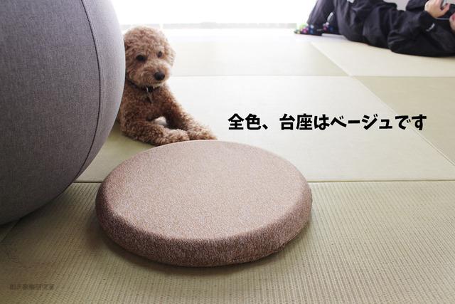 バランスボール おしゃれ 山善 インテリア (8)